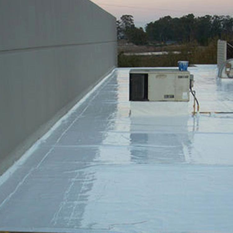 Foam Roof Candidate